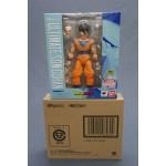 Dragon Ball Z DBZ S.H. Figuarts ultimate Gohan Bandai