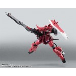 Robot Spirits Side MS Gunner Zaku Warrior (Lunamaria Cutom) Bandai