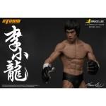 Bruce Lee 1/12 Scale Premium Figure Series No.2 Storm Collectibles