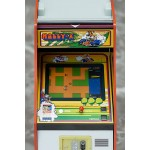 Namco Arcade Game Machine Collection 1/12 Rally-X FREEing