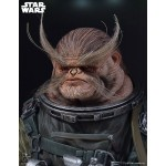 Rogue One (A Star Wars Story) Mini Bust Bistan Gentle Giant