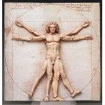 figma The Table Museum Vitruvian Man FREEing
