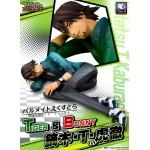 Palmate Extra Series TIGER & BUNNY Kaburagi T. Kotetsu Mehagouse Collector